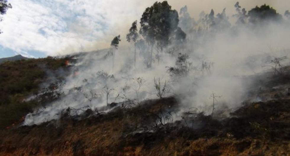 Tarma: más de 9 horas duró el incendio forestal en Muruhuay - 2