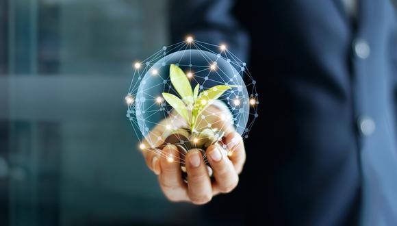 Las crisis políticas y la inestabilidad se convierten en fuertes amenazas para el ecosistema emprendedor en nuestro país. (Foto: iStock)