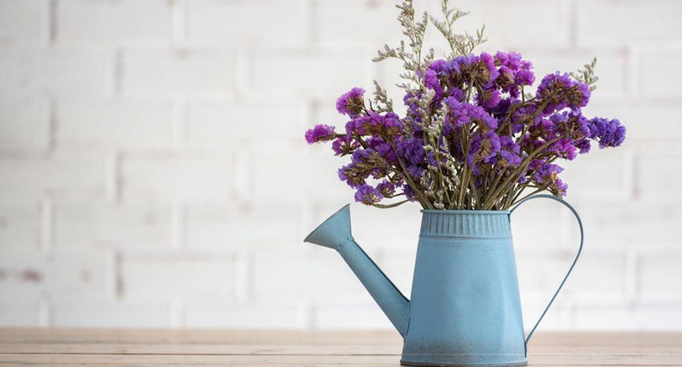 El enjuague bucal puede ayudarte a que tus flores luzcan frescas por mucho más tiempo dentro de casa. (Foto: Shutterstock)