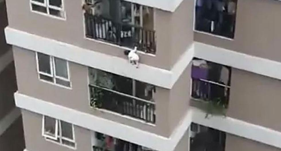 A Delivery Man saves a 3-Year-old Girl who fell from a height of 12 stories in Vietnam