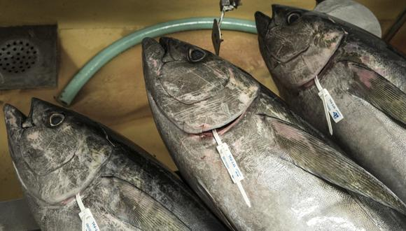 Los menores de 10 años no deberían comer atún. (Foto: EFE/John Javellana)