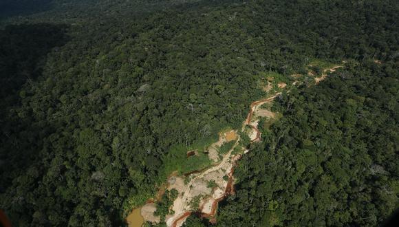 """""""La deforestación no cesó, provocando que la Amazonía perdiera 2,3 millones de hectáreas –con Brasil, Bolivia y Perú a la cabeza–, de acuerdo a datos del Proyecto Monitoreo de la Amazonía Andina."""" FOTOS: ALESSANDRO CURRARINO/EL COMERCIO"""