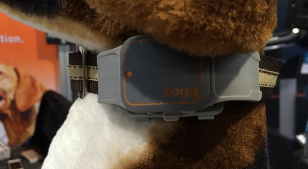 La moda de los sensores de ubicación llega a las mascotas - 2