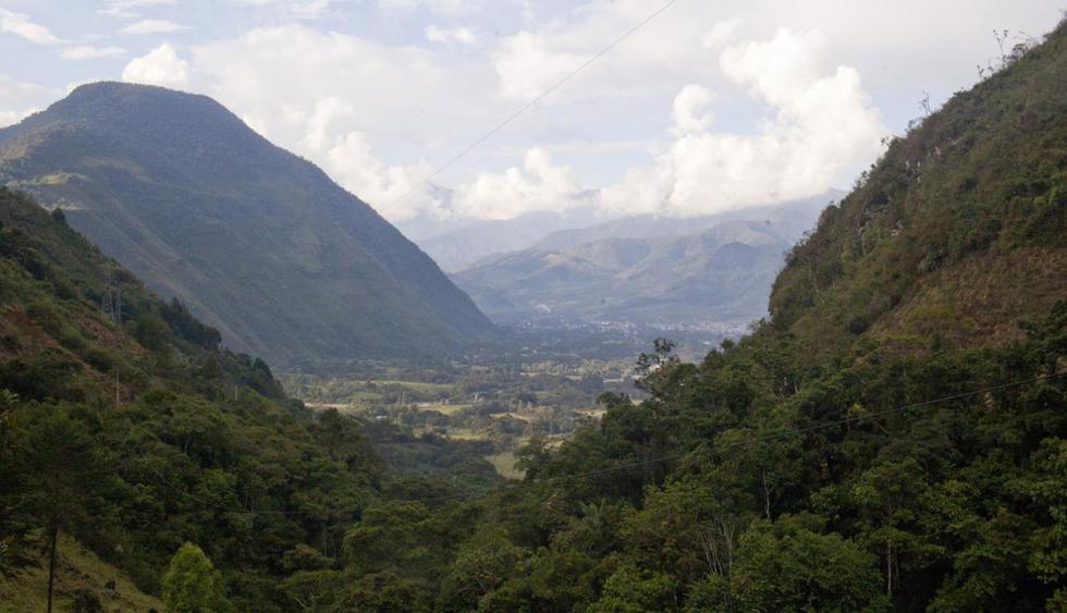 Parque Nacional Yanachaga Chemillén. Cuenta con una superficie de 122 mil hectáreas y se encuentra en los distritos de Oxapampa, Huancabamba, Pozuzo, Villa Rica y Palcazú. (Foto: PromPerú)