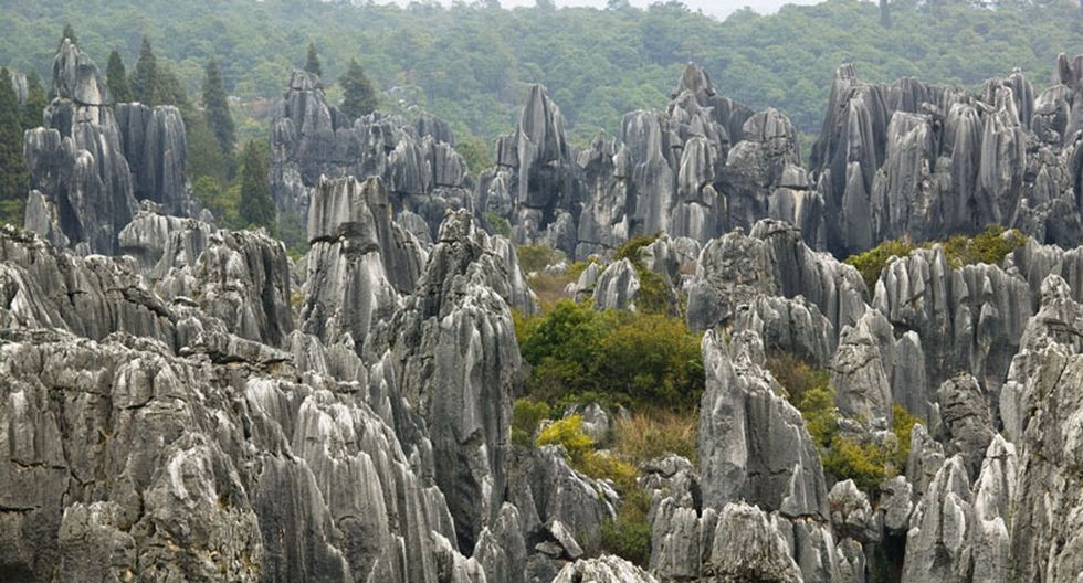 Conoce este espectacular bosque de piedra en China - 4