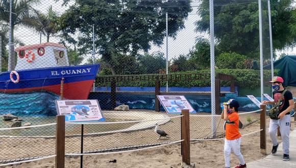 En la exhibición los visitantes verán a las aves guaneras más representativas, como el guanay, piquero y pelícano.(Foto: Municipalidad de Lima)