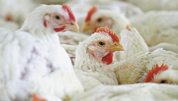 Golpe. El 30% de la producción de pollos iba a restaurantes.