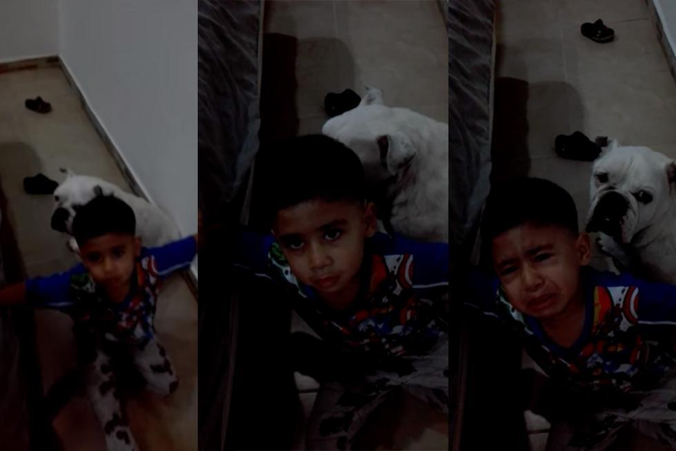 Así defendió el pequeño Jerónimo a su mascota, ante los regaños de su madre.| Foto: Ely Zj/Facebook