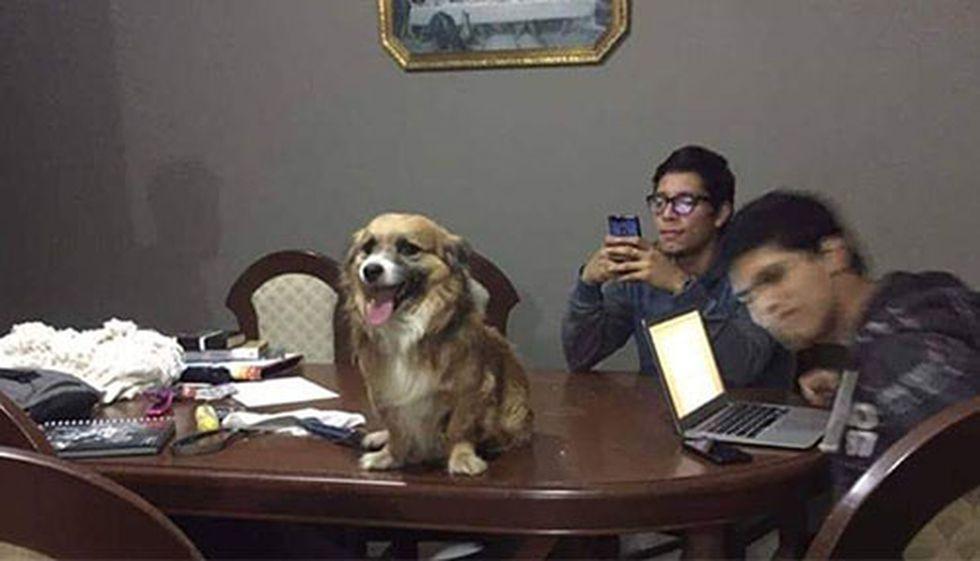 """Patiscortis """"estudiando"""" con los sobrinos de Ronald."""