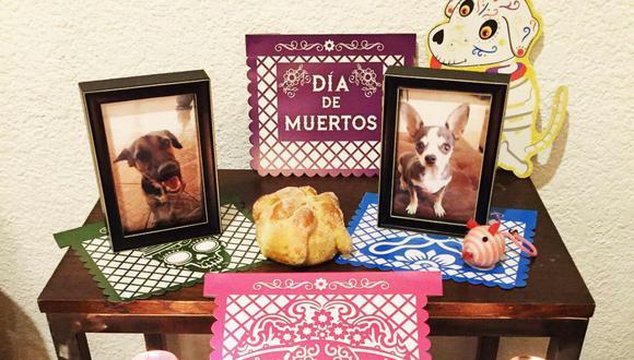 Este homenaje a las mascotas va en aumento. (Foto: anitalamas_ - Instagram)