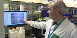 Investigadores británicos ensayan vacuna contra el nuevo coronavirus en ratones