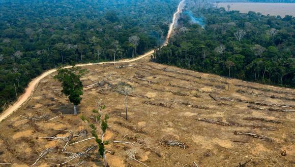 La deforestación en la Amazonía de Brasil se mantenía en los niveles de los últimos años, pero en los últimos cuatro meses se disparó. (Foto: AFP).