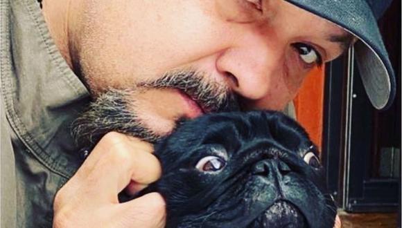 Los fanáticos de Pepe Aguilar conocen bien al consentido del mexicano, pues mucho se habla de los privilegios que el animal tiene (Foto: El Gordo Pug / Instagram)