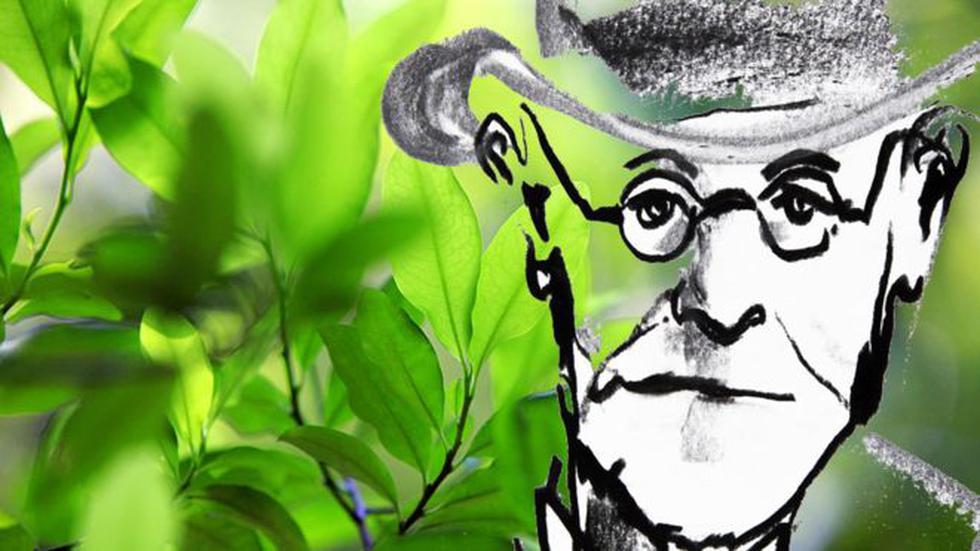 Freud quiso investigar a fondo la planta que tradicionalmente se usaba en Sudamérica. (Foto: Getty Images)