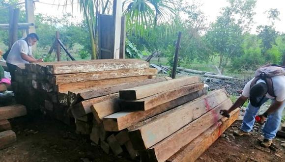 Fiscalía logró incautar más de 23 mil pies tablares de madera y detener a 9 personas en operativo contra el tráfico ilegal en la región San Martín. (Foto: Ministerio Público)