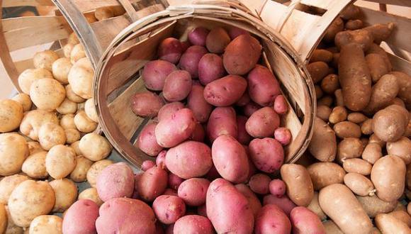 Plantean cultivar papas con agua salada para combatir el hambre