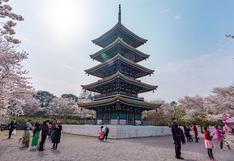 ¿Wuhan podría convertirse en un nuevo destino de turismo oscuro?   FOTOS