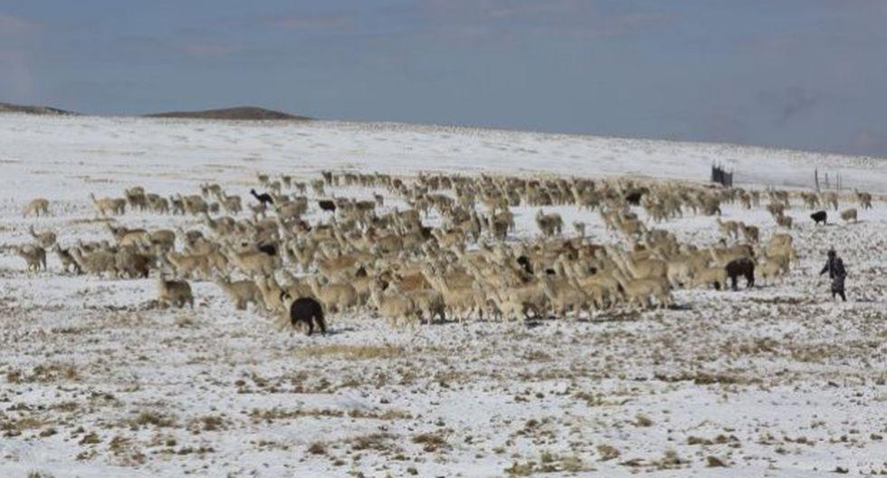 Intensas nevadas y granizadas se registrarán en la sierra desde el miércoles