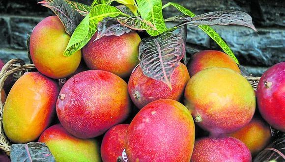 En enero del 2016 las empresas nacionales despacharon mango fresco por US$ 248,000 y se logró concluir dicho año con envíos por US$ 2.3 millones. (Foto: GEC)