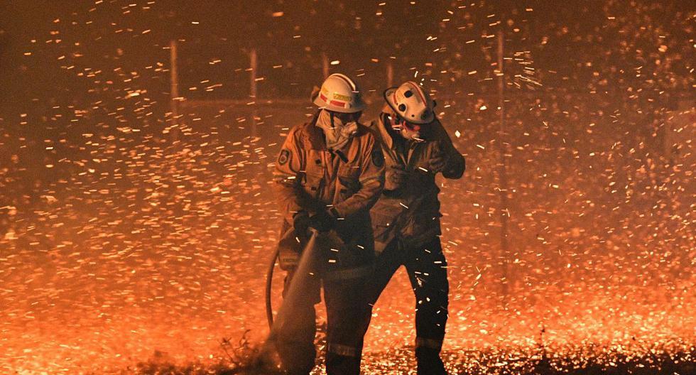 La imagen muestra a los bomberos que luchan contra el fuerte viento en un esfuerzo por proteger las casas cercanas de los incendios forestales cerca de la ciudad de Nowra, en el estado australiano de Nueva Gales del Sur. (AFP)