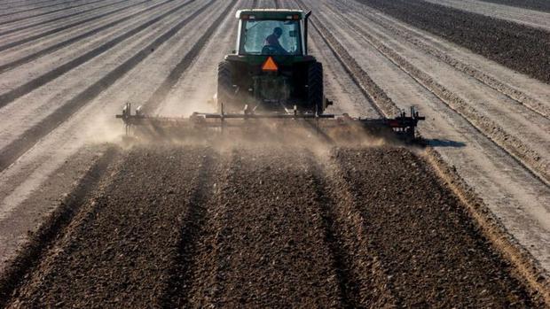 Kraft Heinz è uno dei maggiori acquirenti di pomodori al mondo e ha dovuto fare i conti con il calo dei raccolti negli Stati Uniti.  (FOTO GETTY / GIORNALI HEARST).