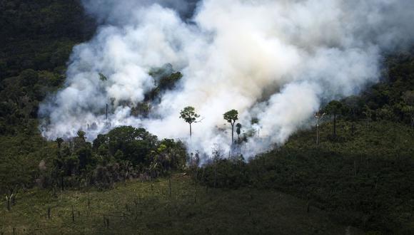 La Amazonía de Brasil arde a una velocidad récord, según imágenes de satélite. (AFP).