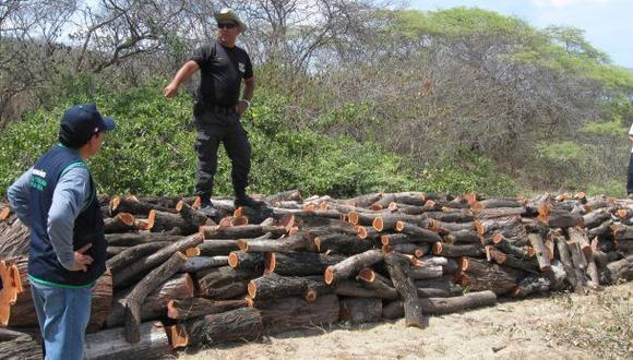Incautaron más de mil troncos de algarrobo talados ilegalmente
