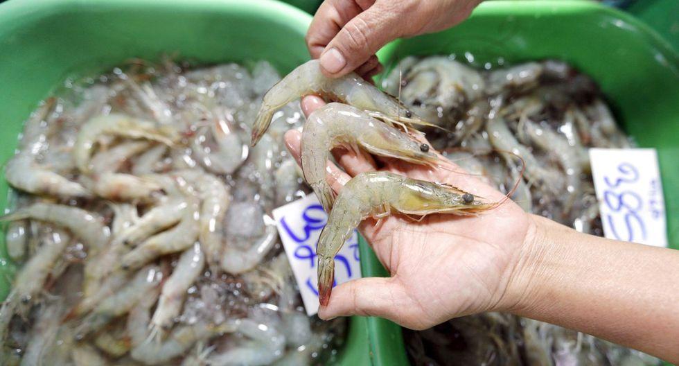 Imagen referencial. China dijo que el sistema de gestión de seguridad alimentaria de estas empresas ecuatorianas no es el adecuado. (EFE/EPA/NARONG SANGNAK/Archivo).