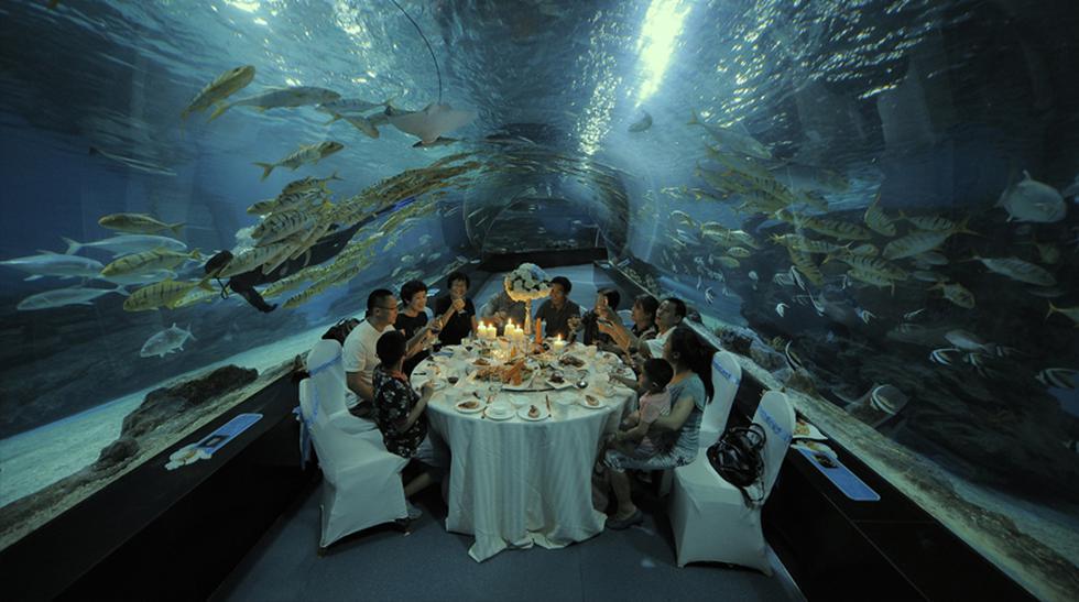 Cena bajo el mar: Turistas disfrutaron de esta comida en China - 2
