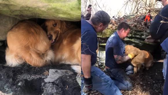 Bailey ayudó a Nadia a encontrar a Brandy. Mientras que varios bomberos y policías llegaron al lugar para proceder con el rescate. | Foto: Nadia Delicati/Facebook