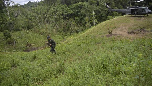 La policía colombiana llega en helicóptero para apoderarse de un campo de coca en Tumaco, el 26 de febrero de 2020. (Foto referencial: RAUL ARBOLEDA / AFP)