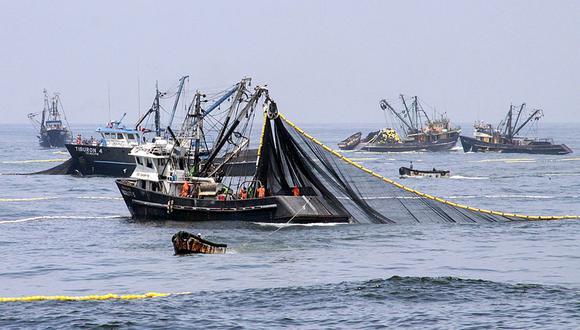 La producción de harina de pescado contribuirá con más de US$ 400 millones en divisas para el país, según Produce. (Foto: GEC)