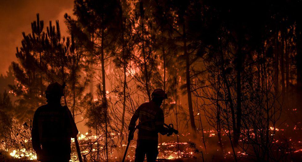 Cerca de 1.700 luchaban contra las llamas al caer la tarde, apoyados por 480 vehículos y 23 aeronaves, según Protección Civil. La mayoría de efectivos estaban situados cerca de la localidad de Vila de Rei. (Foto: AFP)
