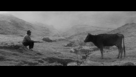 Celestino (Amiel Cayo), un ermitaño campesino, empieza un viaje de sanación con su vaca Samichay, desde la soledad y altura de los andes hasta el caos de la urbanización y los pueblos. (Foto: Quinta Imagen Films & Quechua Films)