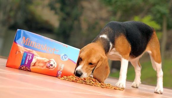 ¿Qué opciones tengo en el mercado para alimentar a mi mascota?