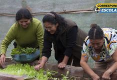 Biohuertos en casa: una manera de contribuir con el medio ambiente