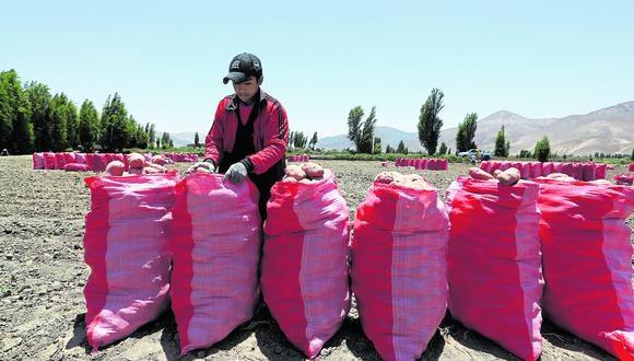 El 4 de diciembre pasado se eliminó el régimen laboral agrario sin que el Congreso apruebe una normativa alternativa (Alessandro Currarino/GEC).
