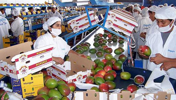 Exportaciones agropecuarias aumentaron 14% durante enero