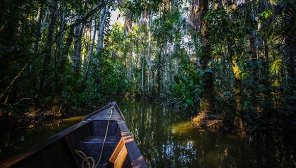Su relieve es montañoso y complejo, con valles angostos y profundas quebradas, siempre cubiertos por una selva impenetrable. (Foto: Shutterstock)