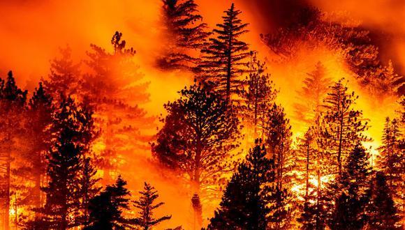 El incendio avanza en los bosques de Los Ángeles, California, Estados Unidos. (EFE / EPA / ETIENNE LAURENT).