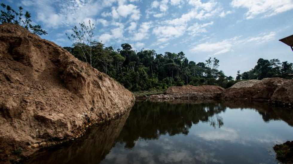 ¿Cuál debería ser el plan para el desarrollo de la Amazonía? - 2