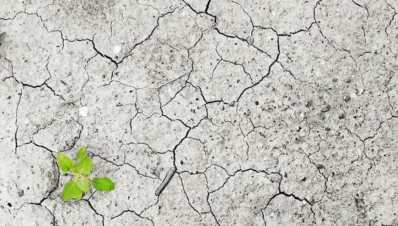 El informe del IPCC indica que es necesario un cambio en el uso de los suelos con el objetivo de atenuar los efectos del cambio climático. (Foto: Pixabay)