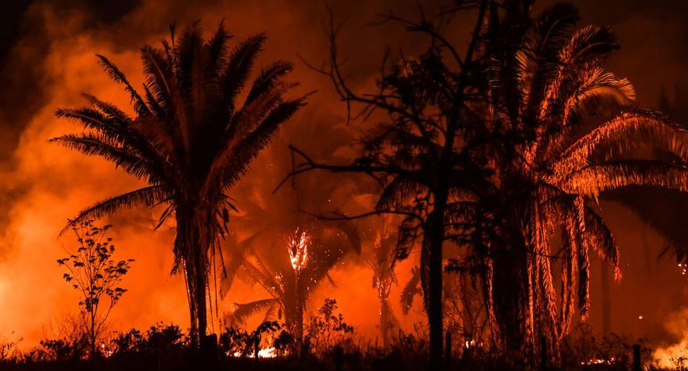 Los incendios en la Amazonía aumentaron un 30%, al pasar de 68,345 en el 2018 a 89,178 el año pasado. (Foto: Archivo/AFP).