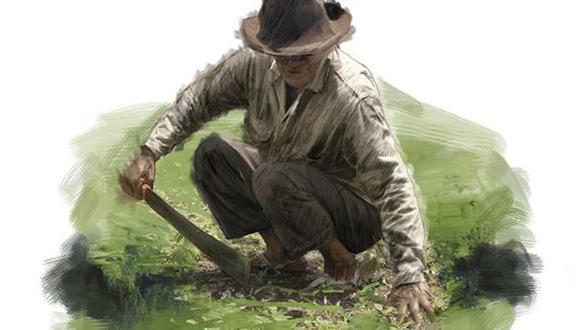 OIT: 56% de trabajadores rurales está en situación vulnerable