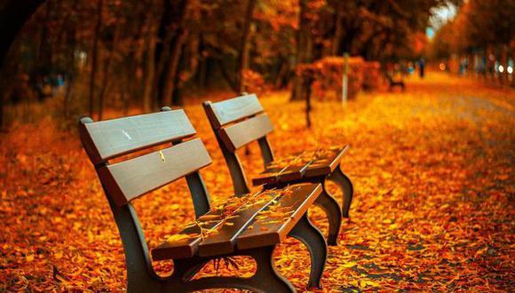 ¿Qué es el llamado equinoccio de otoño? Te lo contamos en esta nota. (Foto: Pixabay)