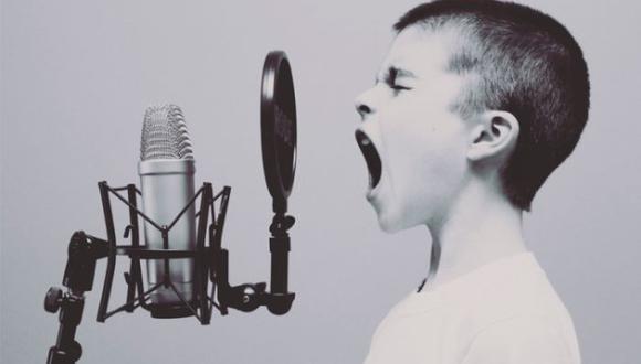 El 16 de abril de cada año se celebra el Día Mundial de la Voz | Foto: Pixabay / Free-Photos / Referencial