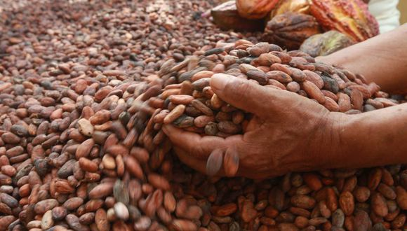 Las exportaciones del cacao y sus derivados se han multiplicado 10 veces entre el 2000 y el 2016, a un ritmo de 25% anual. (El Comercio)