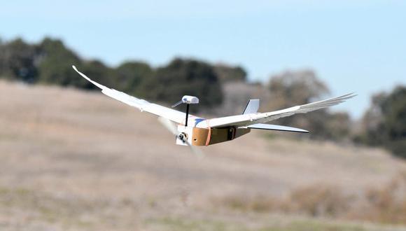 PigeonBot es un drone fabricado en la universidad de Stanford que usa alas que imitan a las de una paloma