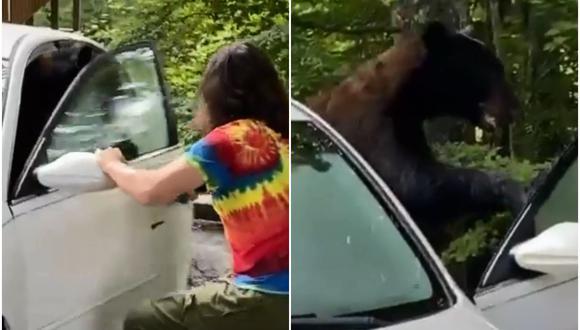 Oso fue encontrado dentro de un auto y su dueño lo enfrentó para ahuyentarlo. (Foto: @bear_inna_car / TikTok)