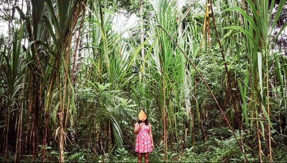Peruana Sofía Álvarez ganó concurso de fotografía de la FAO